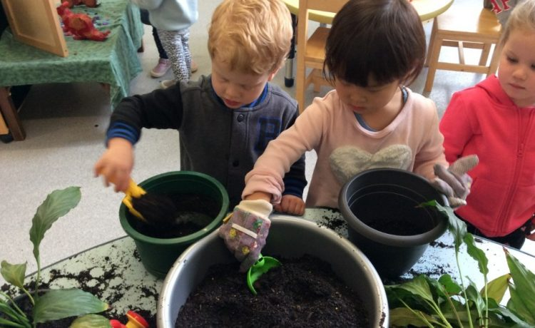 Rangeview Pre-School has two 4 Year Old classes: Banksia & Waratah.